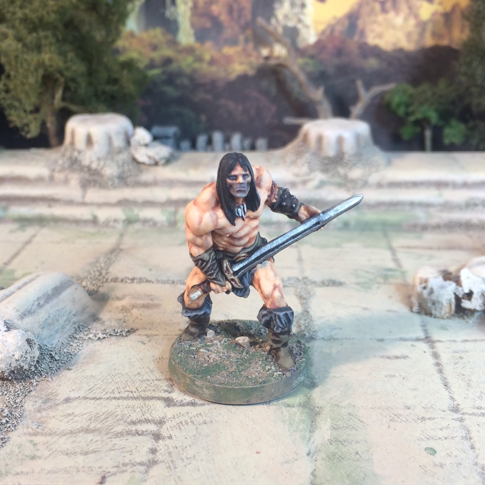 Conan the Board Game Player characters painted